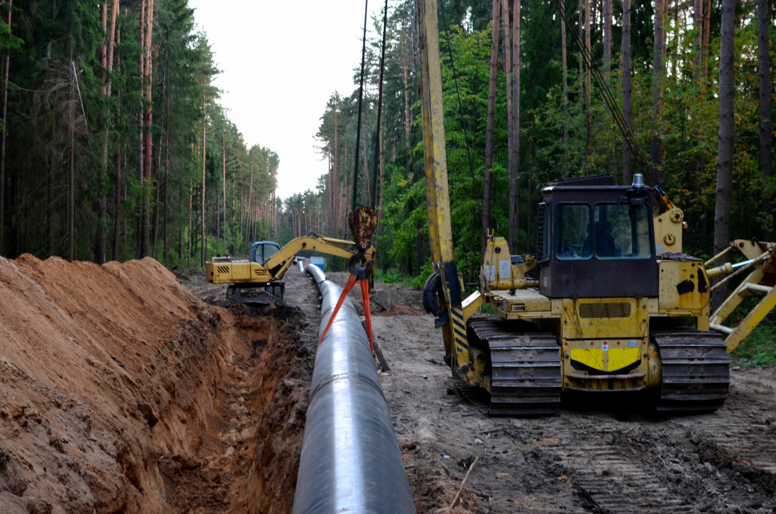 Tractors setting up gas pipeline in forest